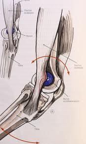 smerter på utsiden av låret