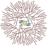 Glykogenmolekyl med glykogenin i midten