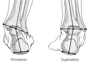 Slik ser høyrefoten ut ved hhv pronasjon og supinasjon