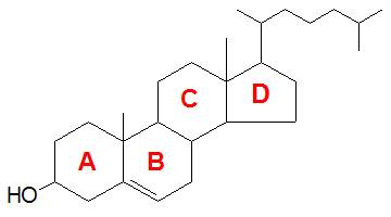 www.themedicalbiochemistrypage.org