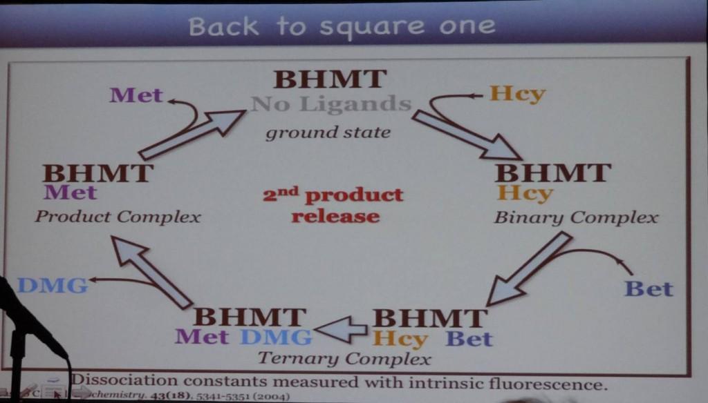 BHMT syklus