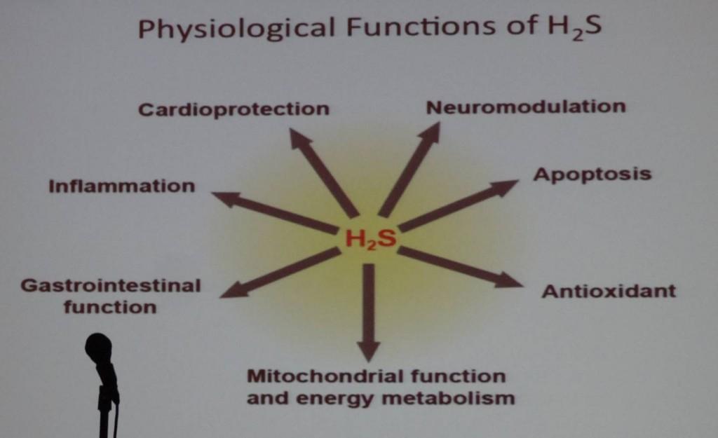 H2S-funksjon