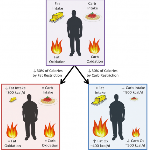 Hall Kevin D, Bemis T, Brychta R, Chen Kong Y, Courville A, et al. (2015) Calorie for Calorie, Dietary Fat Restriction Results in More Body Fat Loss than Carbohydrate Restriction in People with Obesity. Cell Metabolism.